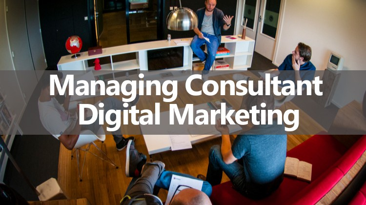 Managing Consultant Digital Marketing b2b