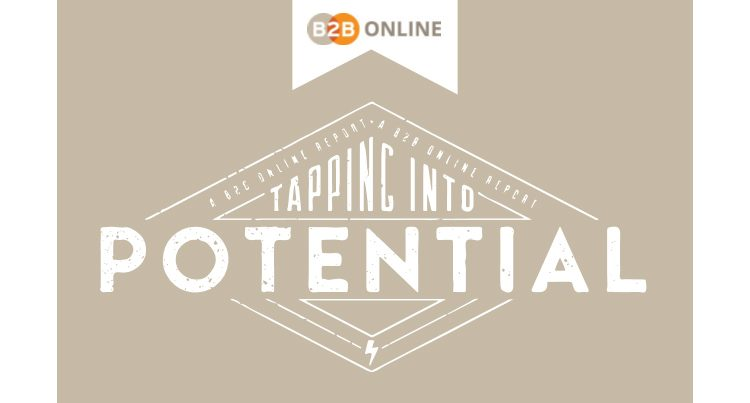 b2b online amsterdam 2017 rapport