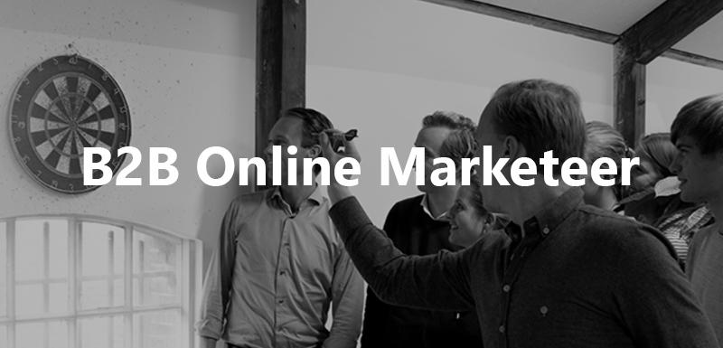 b2b online marketeer vacature jelba