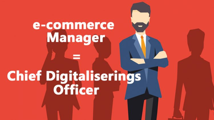 e-commerce manager b2b